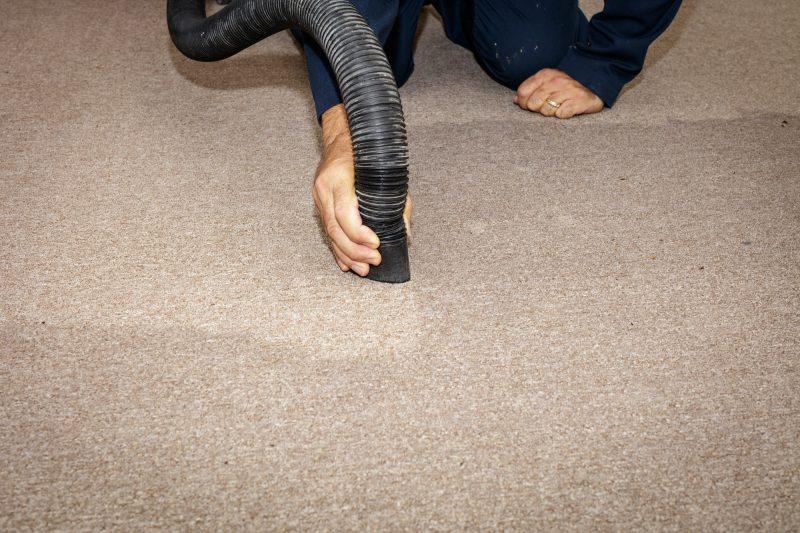 water damaged carpeting