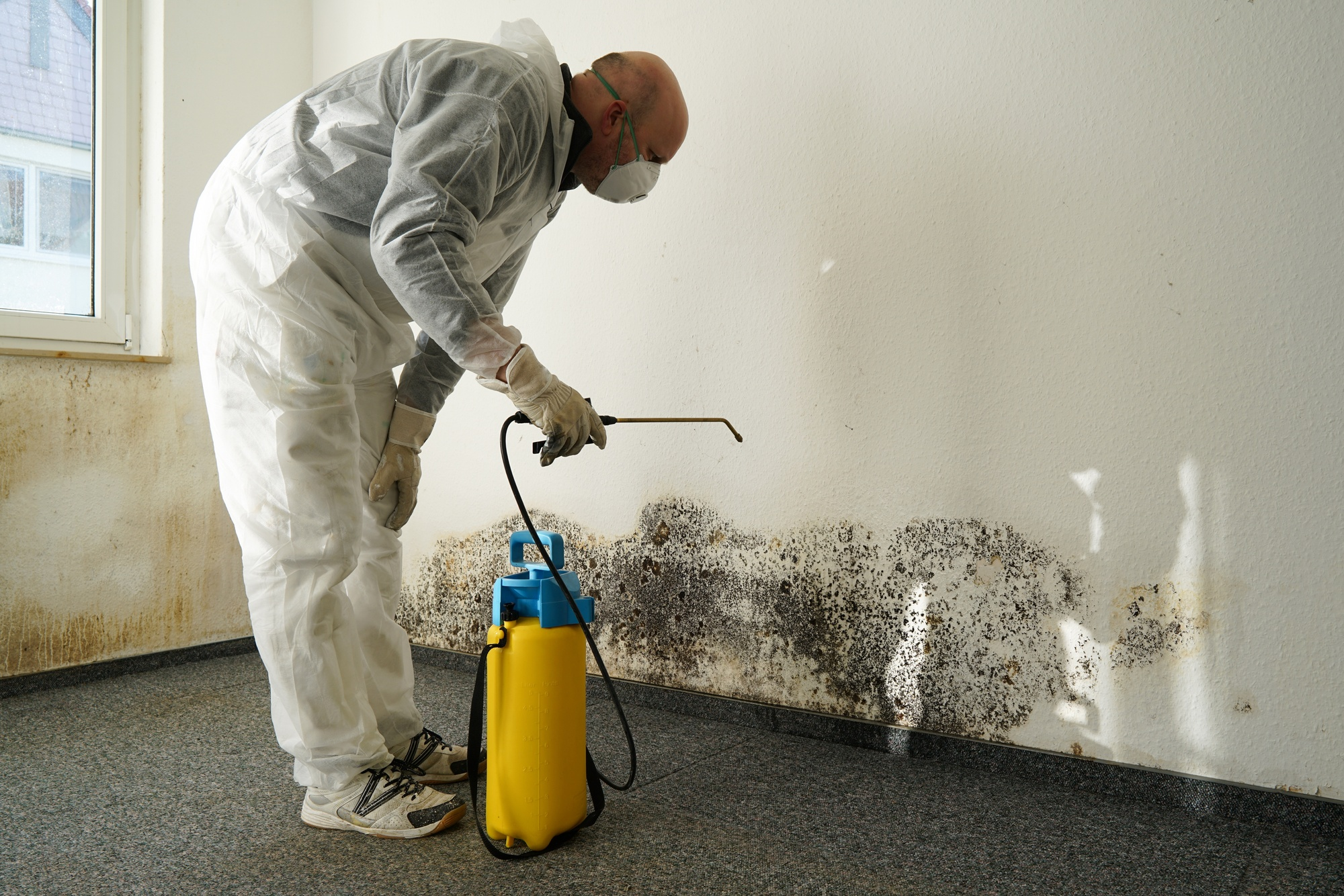 water damage restoration tips